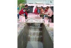 Down the drain for their 'idol'