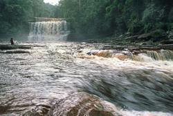 Visiting Maliau Basin, the lost world of Sabah
