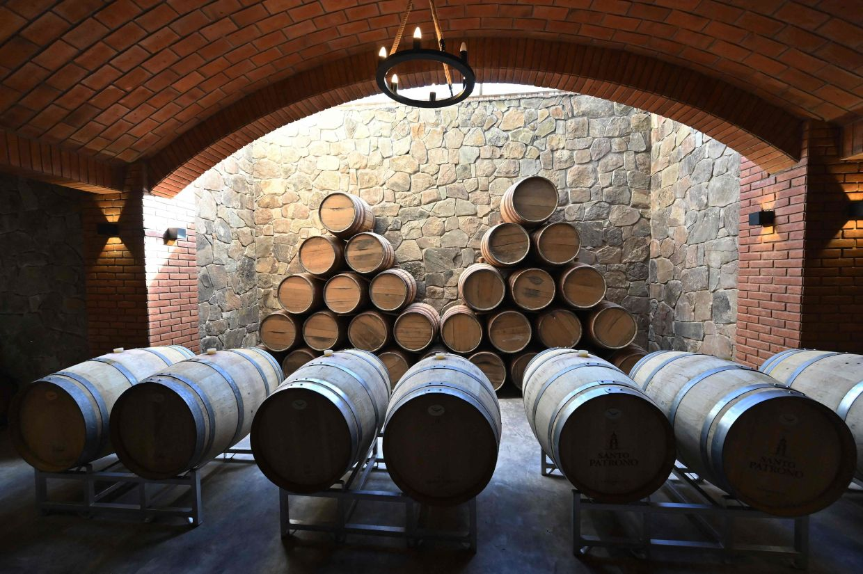 Oak casks where the vine is fermented at the Kuhlmann Winery. – Photo: AFP