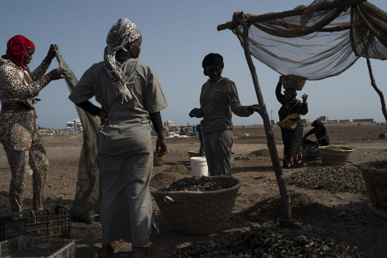 Fatou Samba, right, president of the association of female fish processors, carries on her head a basket filled with the remains of processed fish at Bargny beach, some 35 km  east of Dakar, Senegal.