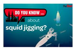 Do you know ... about squid jigging?