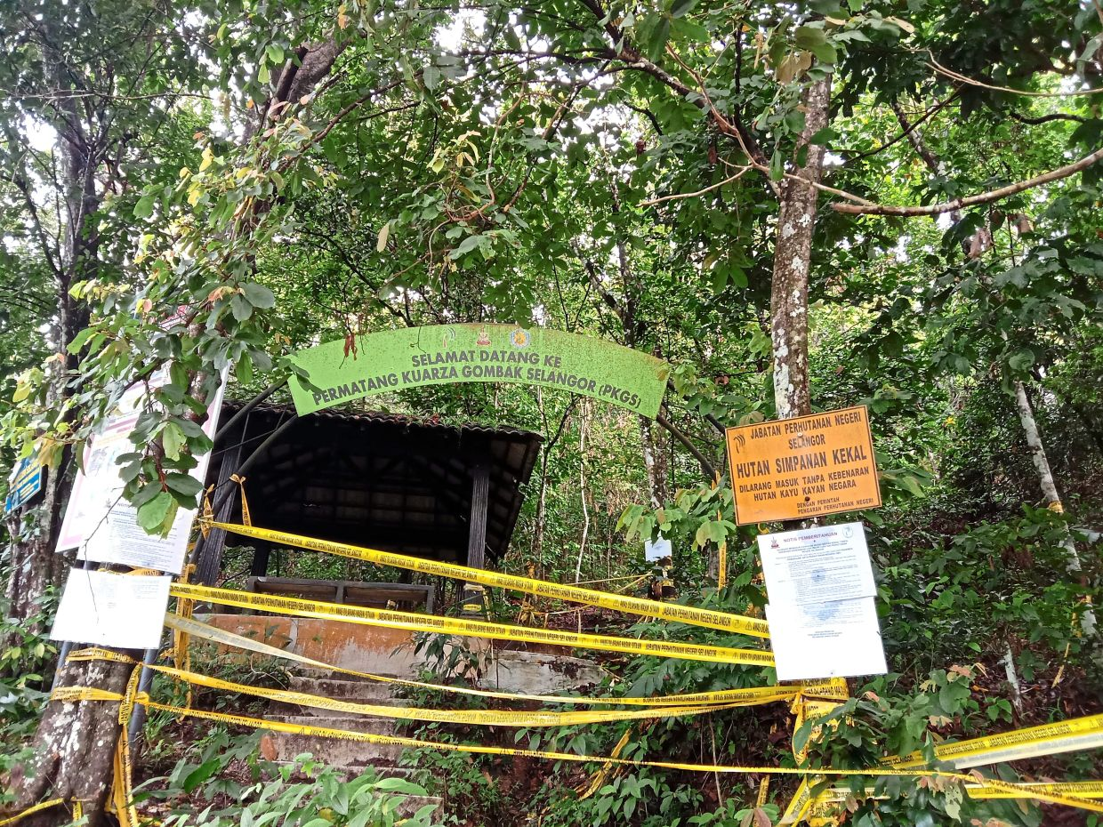 The Forestry Department has cordoned off the entrance of the Tabur West trail in Bukit Tabur, near the Klang Gates Dam. — Filepic