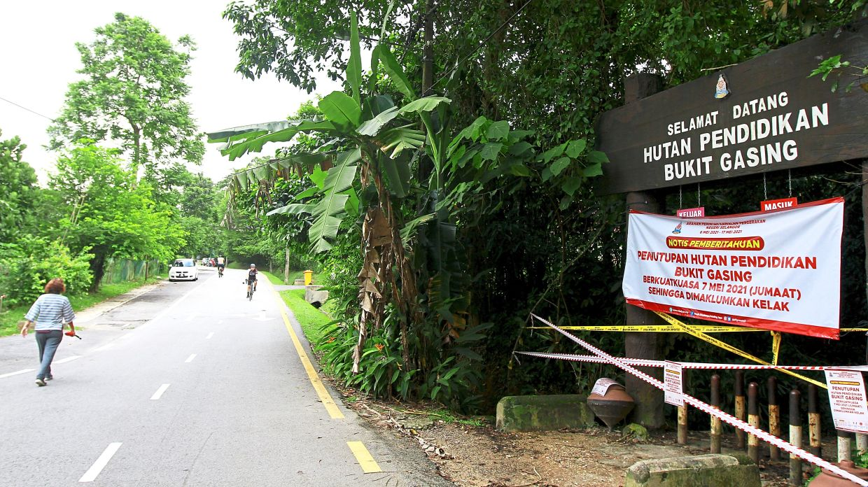 Members of the public seen exercising around the Bukit Gasing Forest Reserve in Petaling Jaya, which has remained closed since May 7.