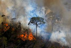 The world is burning: Time to get serious about tackling climate change at COP26