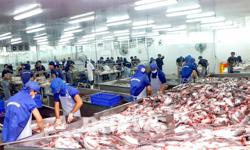 Vietnam seafood exports to go up by 10 per cent in Q2