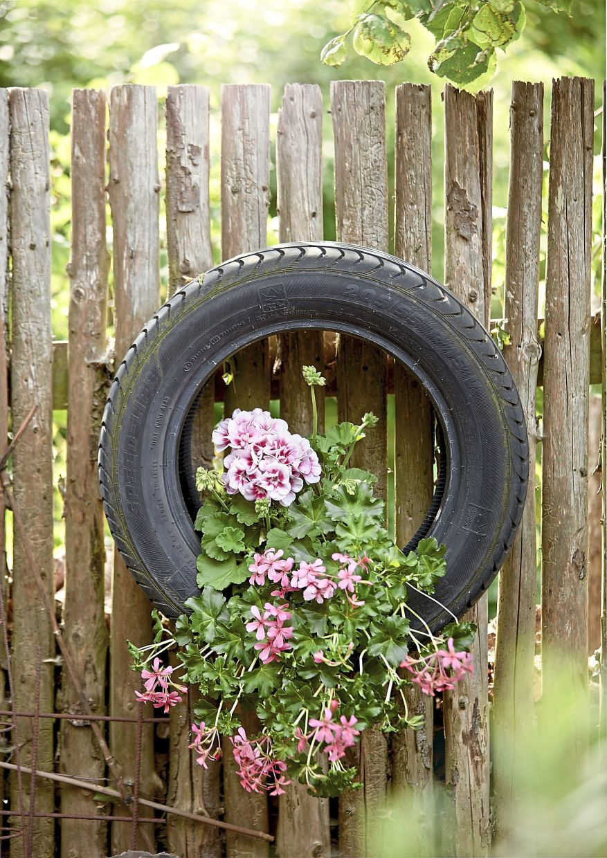 Car tyres become hanging baskets: A mixture of hanging and standing geraniums makes the planting look particularly lush.