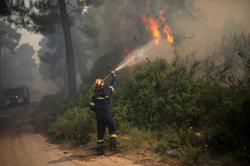 Greek firefighters battle forest blaze near Athens