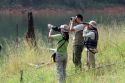 Enlist bird watchers as extra eyes to curb wildlife crimes