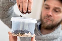 Growing fungi at home has mushroomed as a coronavirus-era hobby