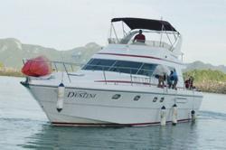 Destini's long road to recovery despite surprise Q1 core net profit