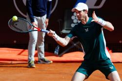 Tennis-Murray backs Federer's 'sensible decision' to pull out of French Open