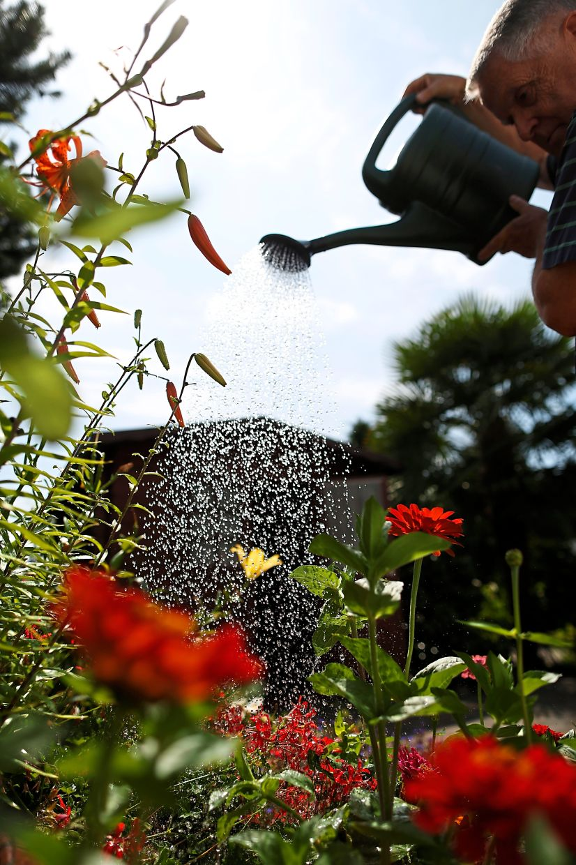 Environmentalists have long campaigned for people to use rainwater rather than drinking water when watering the plants in the garden. Photo: Ina Fassbender/dpa