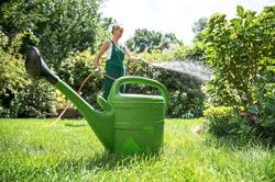 How to collect and use rainwater at home and in the garden