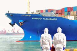 Growth of China's foreign trade expected to remain strong
