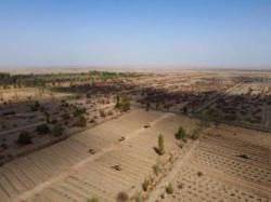 China wants it own Bordeaux region on edge of Gobi Desert
