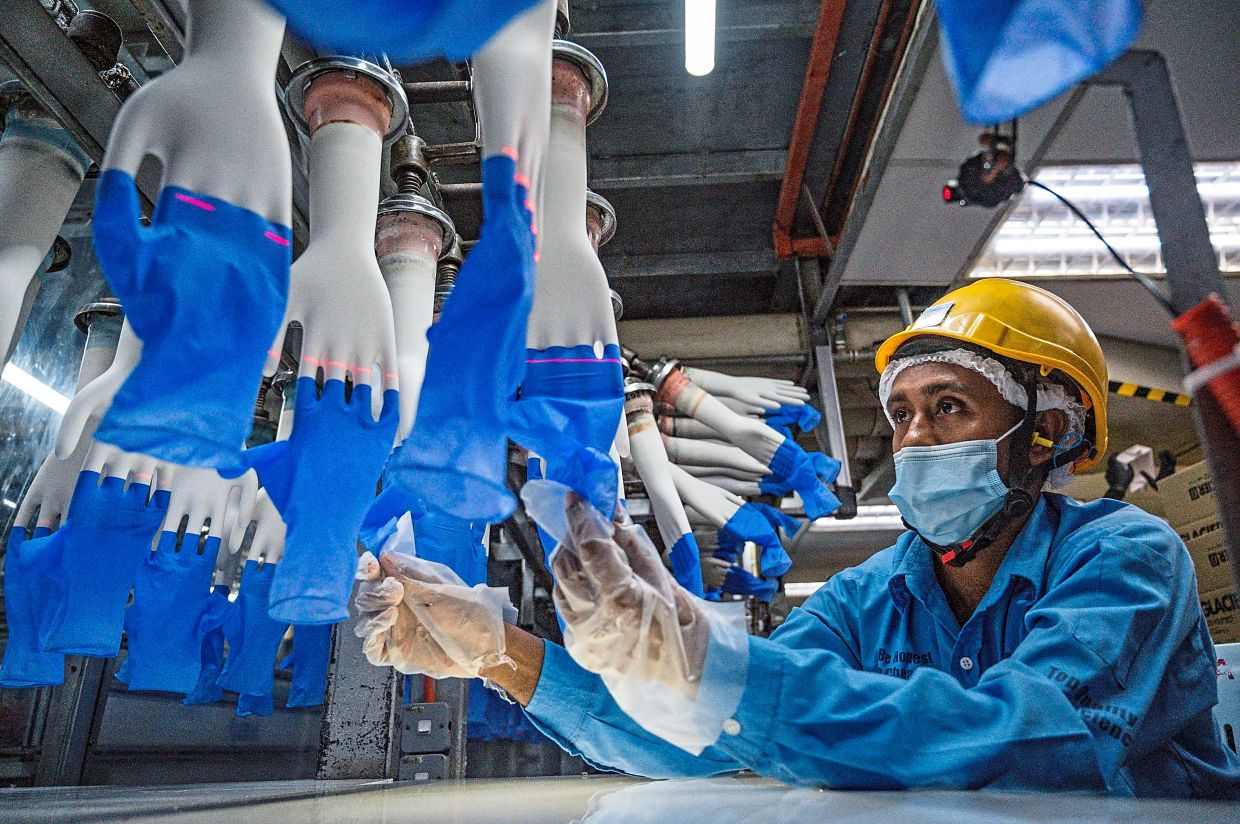 No panic:Other glove makers are not likely to report a decline in ASPs as experienced by Top Glove in its third quarter ended May 31, 2021. —AFP