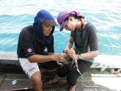Malaysian marine scientist highlights significance of seagrass in our ecosystem