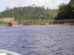 Pahang Regent recommends halt to mining activities in Tasik Chini area