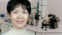 Chinese scientist at centre of virus controversy denies lab-leak theory