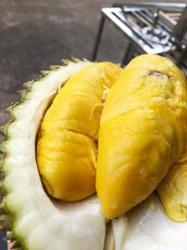 Malaysian 'designer durians' carving out premium niche in China