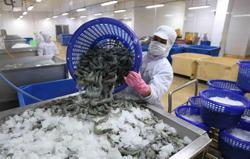 Vietnam shrimp exports swell despite pandemic