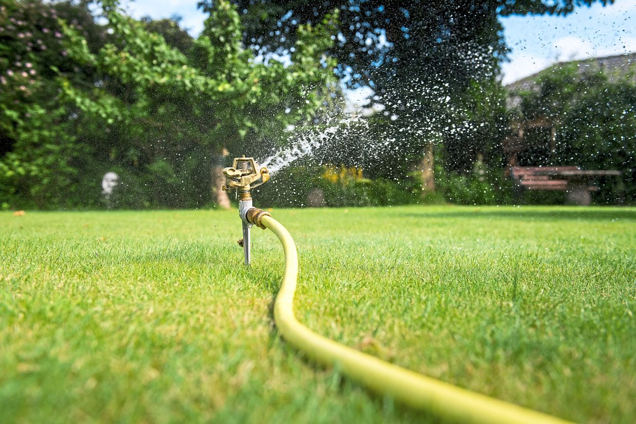 Those who don't feel like lugging around a heavy watering can can have their garden watered by automatic systems. Photo: Benjamin Nolte/dpa