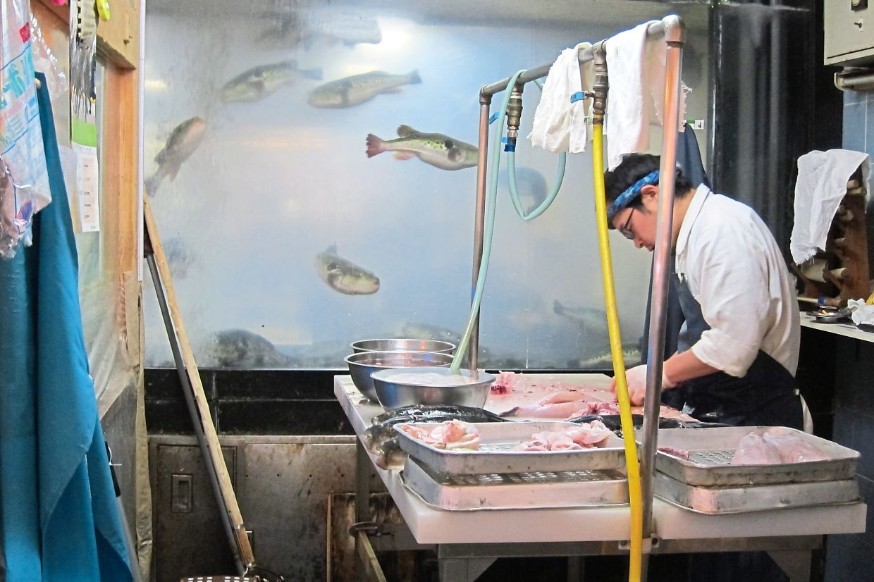 A chef demonstrates how to kill a living fugu outside a restaurant in Osaka.