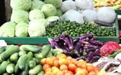 Vegetable supply from Camerons still stable despite EMCO