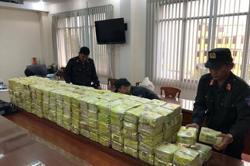 Vietnam police makes massive haul; seizes quarter ton of ketamine, 90kg stored in pig organs