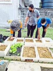 Library going green with gusto in Ipoh