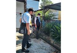 Checks find mosquito larvae in many spots at Kajang village