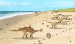Last dinosaurs' footprints on British soil found by White Cliffs of Dover