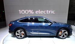 Carmaker pledges to halt combustion engines