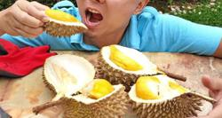 Covid-19: Health Ministry debunks viral claim regarding durians and vaccination