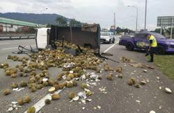 Lorry spills a tonne of durians on highway in crash