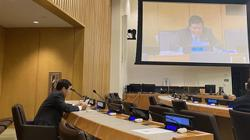 Vietnam reaffirms importance of 1982 UNCLOS, especially in South China Sea issue