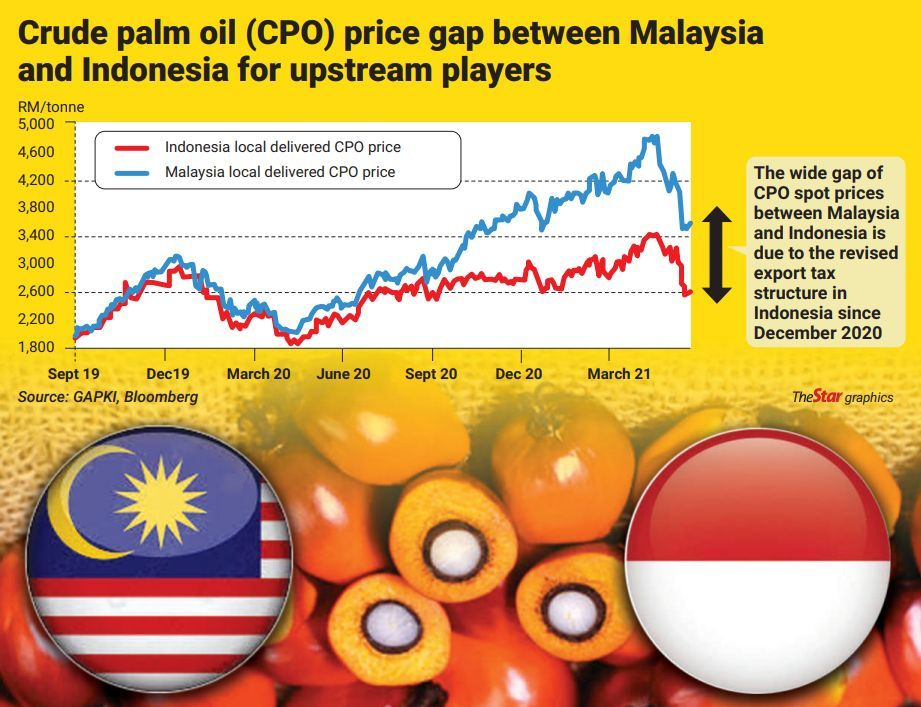 Indonesia's proposal to reduce its palm oil export levies will benefit Malaysia's upstream oil palm planters and integrated plantation companies with operations in the republic.