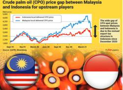 Indonesia's lower CPO export levy beneficiaries