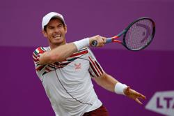 Tennis-Murray hoping to write new chapter of Wimbledon love story