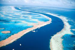 The Great Barrier Reef: A heritage site in danger