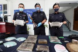Four men arrested, 6.2kg ganja seized in raids