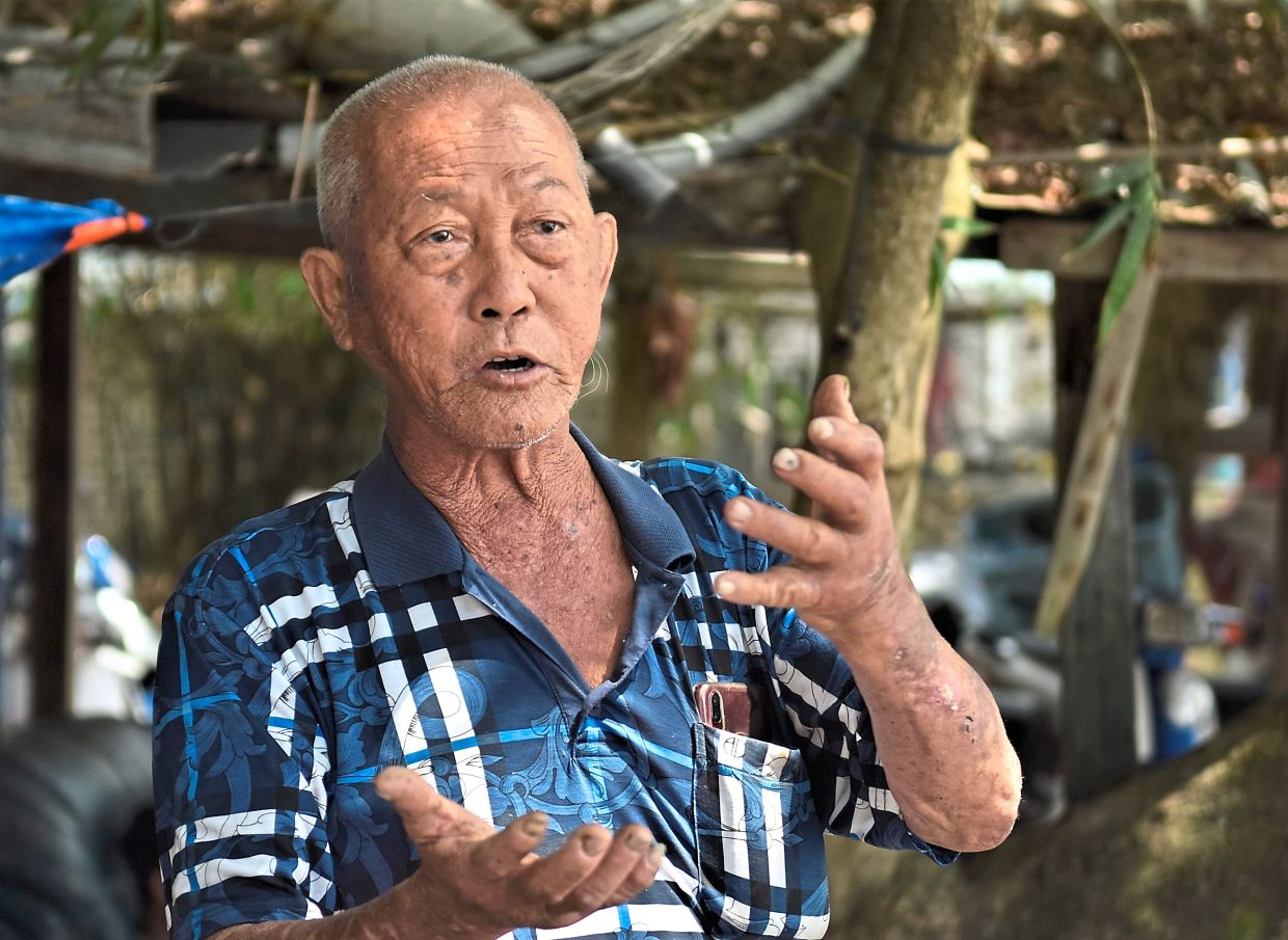'New breeding grounds will emerge. Fish will not die out completely,' said Ang.