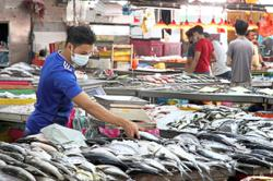 Wholesale market traders eager for jabs to feel safe