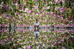Watch: Japan's teamLab unveils new Tokyo exhibit 'Floating Flower Gardens'