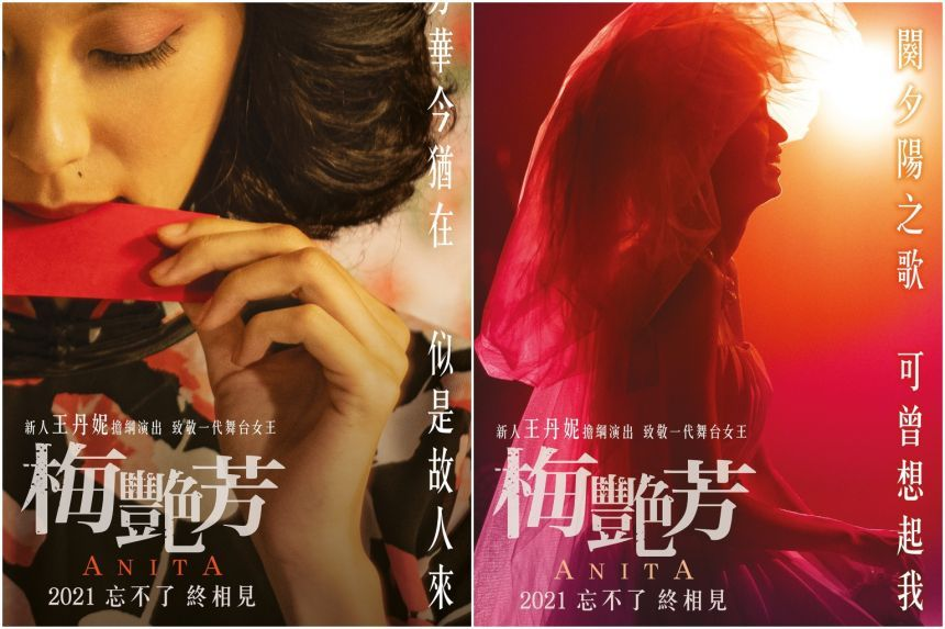 The posters for 'Anita'. Photos: Handout