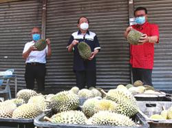 'Baseless claims affecting livelihood of durian traders during pandemic'