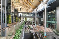 Singapore dynasty CDL needs turnaround plan