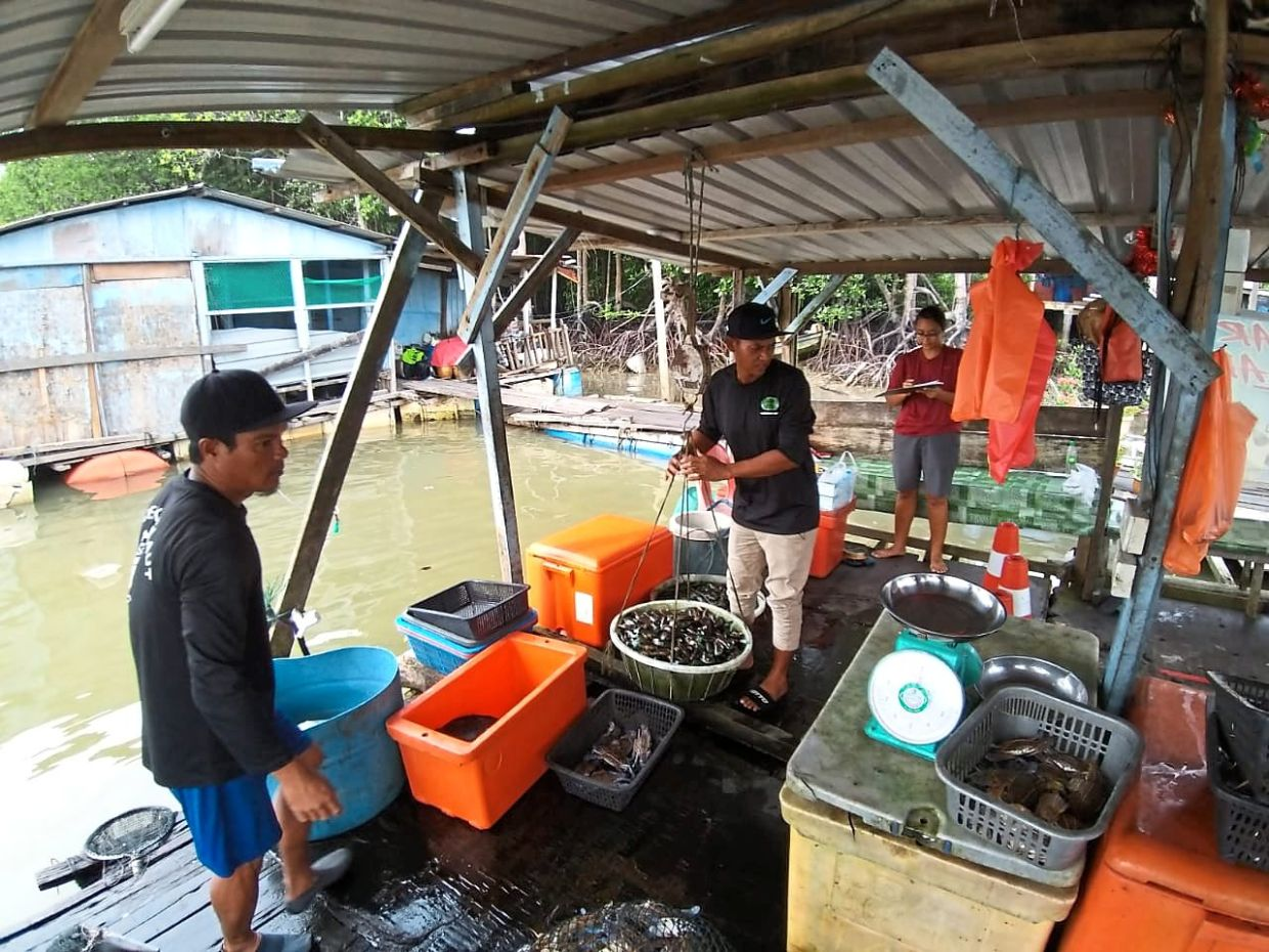 Fishermen weighing their catch which they say has been decreasing for the past 10 years.