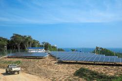 Fast renewable energy awards by govt seen