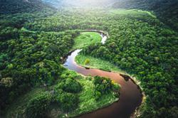 How warming and deforestation is turning the Amazon basin into a source of CO2